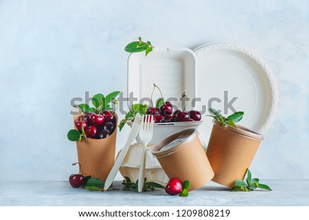Catering disposables, cups, plates and containers with cherries. Eco-friendly food packaging on a neutral gray background with copy space. Preserving nature and recycling concept.