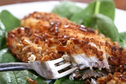 catfish filets coated with crushed pretzels and roasted