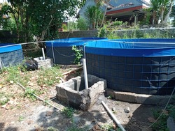 catfish rearing tanks for catfish farming
