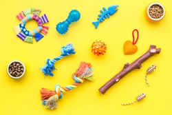 cats and dogs toys and acessories for pets yellow background top view