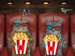 Cats in 3d glasses is eating popcorn and watching a movie in the cinema.