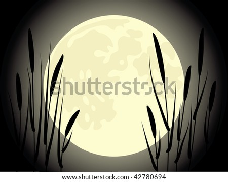 Cattail under the moon. Beautiful vector illustration.