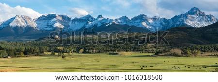 cattle ranch below the dallas...