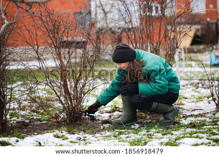 Caucasian cute woman gardener with garden tool close up, gardener pruning branches with pruning shears, winter plant pruning, winter gardening work in winter work clothes
