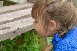 Caucasian girl observe the beetles in nature. Communication with wildlife