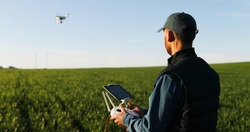 Caucasian man farmer in hat standing in green wheat field and controlling of drone which flying above margin. Male using tablet device as controller. Technologies in farming.
