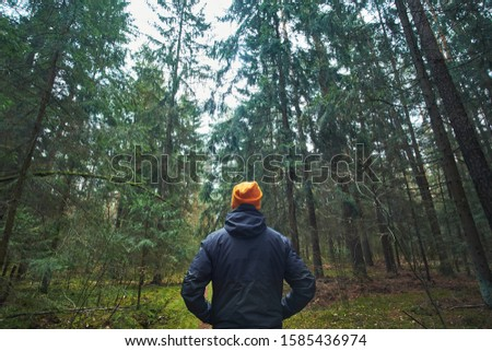 Caucasian man has a walk in spruce forest, close view from back