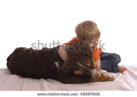 Caucasian Toddler Hugging His Brown Australian Shepherd ...