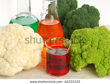 Cauliflower, broccoli, test tubes and the resulting mix, brocliflower - genetically modified foods