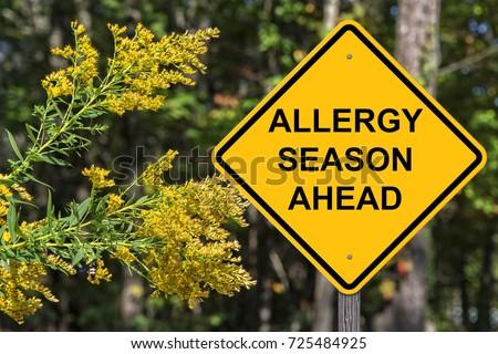 Caution Sign - Allergy Season Ahead ストックフォト ©