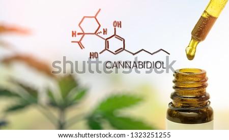 CBD Cannabidiol in pipette against Hemp plant with chemical molecule