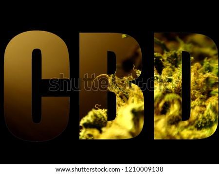 CBD marijuana logo on black background, cbd marijuana text, font, logo