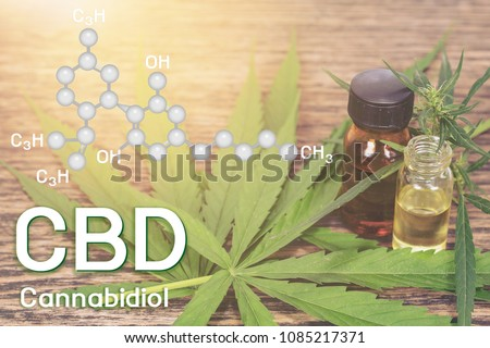 Cbd oil, Cannabis of the formula CBD.