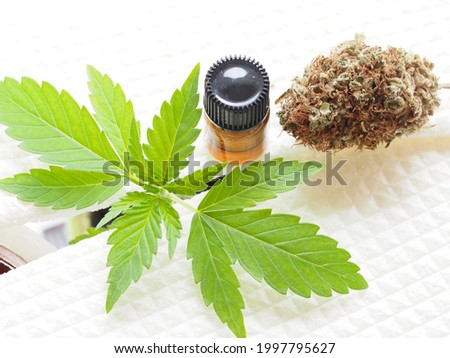 cbd oil in bottle. medical marijuana.cannabis plant Stock photo ©