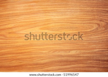 Cedar background