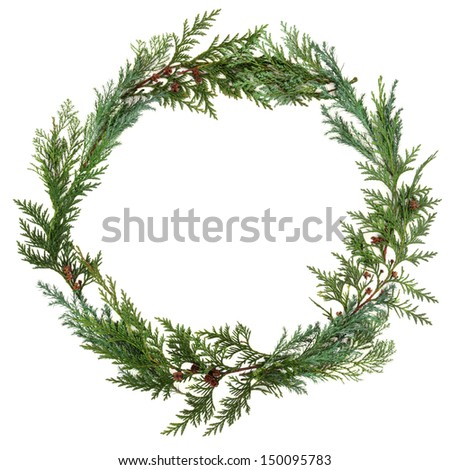 Cedar cypress leaf wreath over white background.