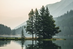 Cedar trees   with reflections along the Two Jack Lake in Banff