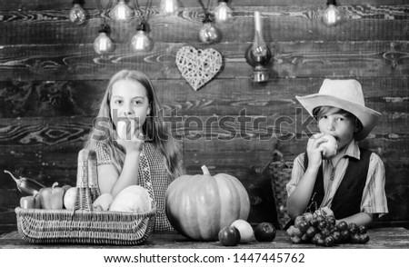 Celebrate harvest festival. Kids girl boy fresh vegetables harvest rustic style. Children presenting harvest vegetable wooden background. Fall harvest holiday. Elementary school fall festival idea.