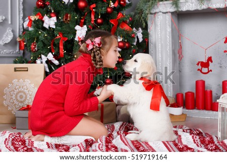 Celebrating christmas with furry friends. little girl with two golden retriever puppies. christmas tree and presents. Pretty child girl with retriever wearing christmas hat