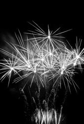 Celebration black and white fireworks