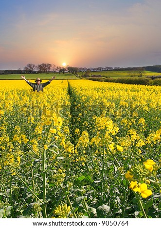 Celebration of Nature as sun rises Man throws up his hands in joy of a fine new Day and a Healthy crop, Farm on the Hillside in background