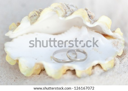 Celebration Valentine's day on beach, rings on shell