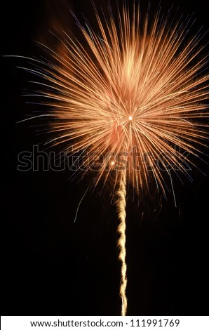 Celebration with reddish orange pyrotechnic flower in the night sky