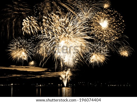 Celebratory firework in a night sky, photo in sepia colors