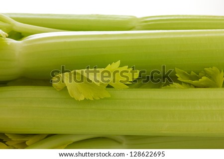 Celery stems close up
