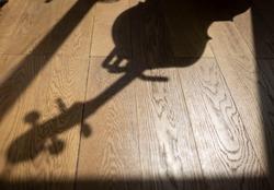cello shadow on a wooden floor