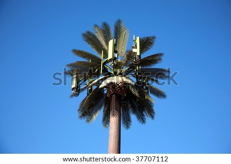 Cellular Phone Tower Cellular Phone Tower Disguised