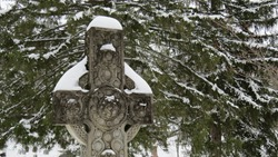 Celtic Cross surrounded by Snow Covered Pine Branches; Sleepy Hollow Cemetery, Concord, Massachusetts
