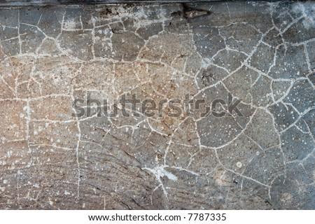 cement concrete texture 3