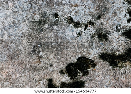 Cement surface background with a big moss area