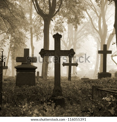 cemetary in fog in autumn stock photo