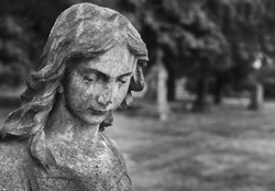 Cemetery angel - mourning sculpture in cemetery
