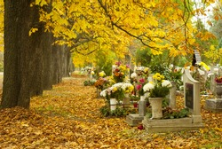 cemetery at fall, after all saints day