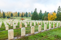 cemetery grave marker tombstones with American flag  in Veterans day ,autumn.
