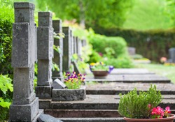 Cemetery, graves in spring
