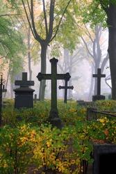 cemetery in fog in autumn