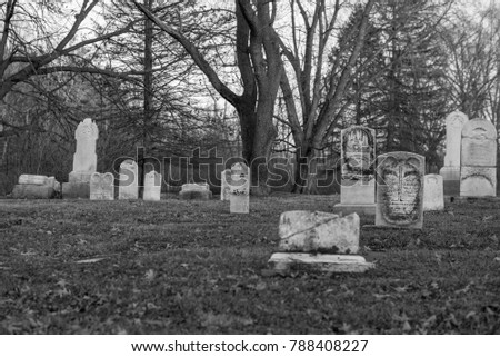 Cemetery with foreground left out of focus, focal point is center of image, not foreground. #788408227