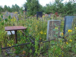Cemetery with stone monuments. Old abandoned cemetery in the afternoon in summer. Grass thickets. Old granite monuments on the graves. Human graves. The theme of oblivion, calm, death and Halloween.