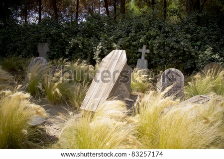 cemetery with wooden coffins sticking out of the ground and toms on the background