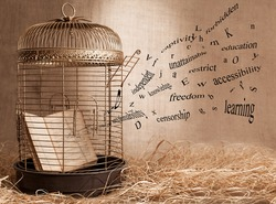 censorship concept with a book and a birdcage on grunge background