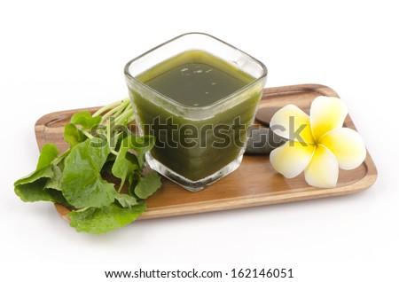 Centella asiatica, Asiatic Pennywort, (Centella asiatica (Linn.) Urban.) Herbal Drink. Has medicinal properties.  Stock fotó ©