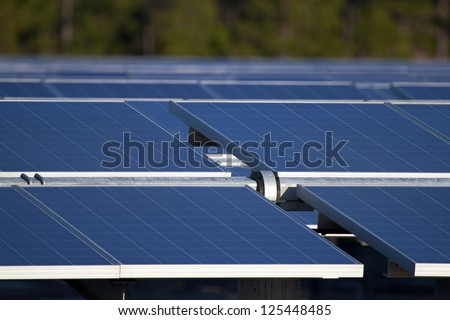 Central Florida power generation farm's solar panels point toward the early morning sun. The panels are mounted on moving racks, that follow the sun, maximizing solar collection capabilities.