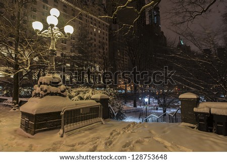Central Park after snow storm in the early morning hours