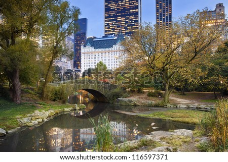 Central Park and Manhattan Skyline. Image of Central Park and Gapstow Bridge in New York City, USA.