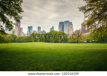 Central park at rainy day, New York City