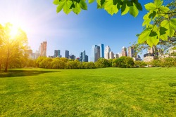 Central park at sunny day, New York City